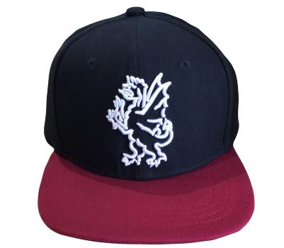 Somerset County Cricket C Somerset CCC  Snapback Cap
