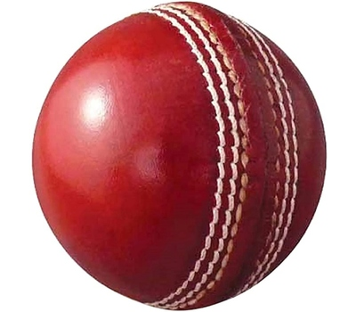 DCS Cricket Ball 80 Overs